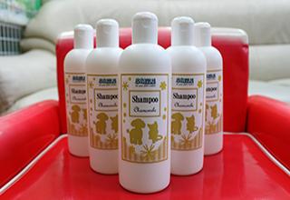 shampoo_img_01